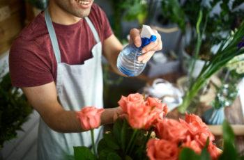 Vender em casa – seu primeiro desafio